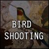 Bird shooting