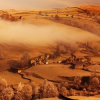 Morning Mist Jigsaw