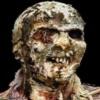 SL Zombie ShotZ