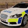 Jaguar Police Puzzle
