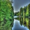 Brunet Island State Park Jigsaw
