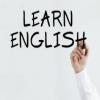 Kuizi Gjuha angleze pjesa e gjashtë