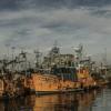Mar Del Plata Jigsaw