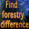 Find forestry difference