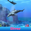 Diver. Find objects