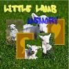 Little Lamb Memory