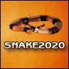 Snake 20-20