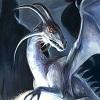 Puzzles Dragons